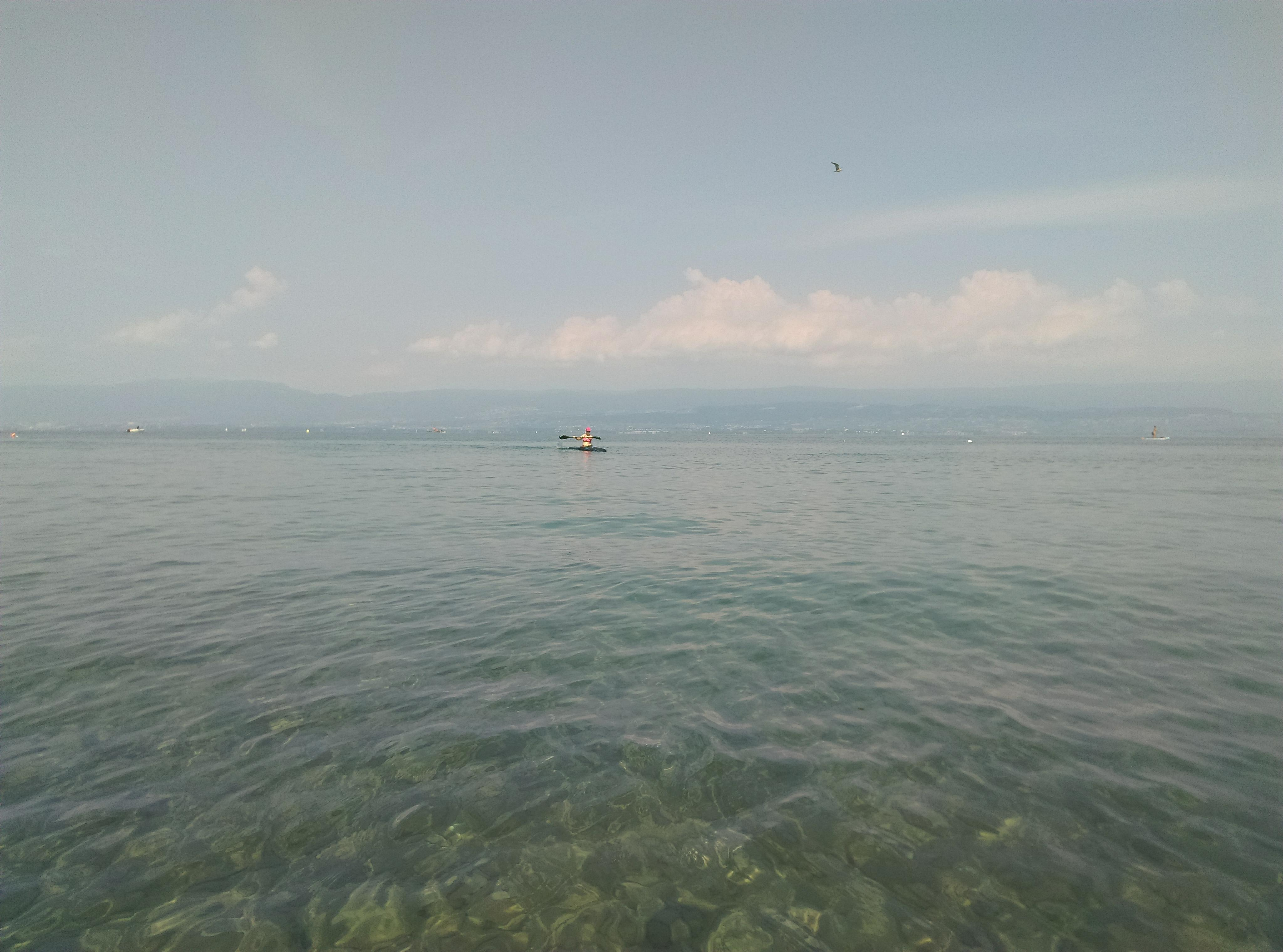 LacLeman3